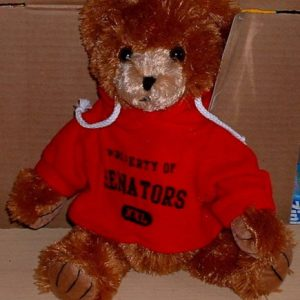 NHL SENATORS HOODIE TEDDY BEAR TOY
